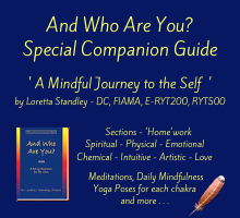 And Who Are You - Special Companion Guide on DrStandley.com