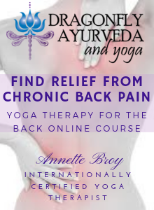 Dragonfly Ayruveda and Yoga - Find Relief from Chronic Back Pain- Venice, Florida